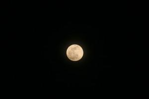1/3ほどが地球の半影に入った満月。部分食は始まっていないので丸く見える。