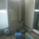 男性用浴場の洗い場